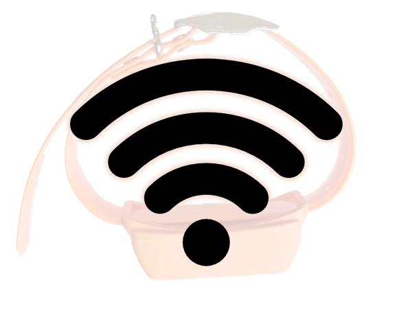Интернет для собачьего трекера
